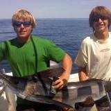Sail Fish!